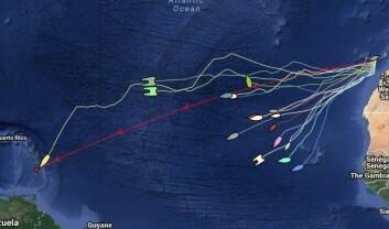 HALVEIS: ARC-feltet etter 8 døgn. «Rambler88« nesten i mål. Frostad over halveis, side om side med en langt større katamaran. De norske båtene med stor spredning.