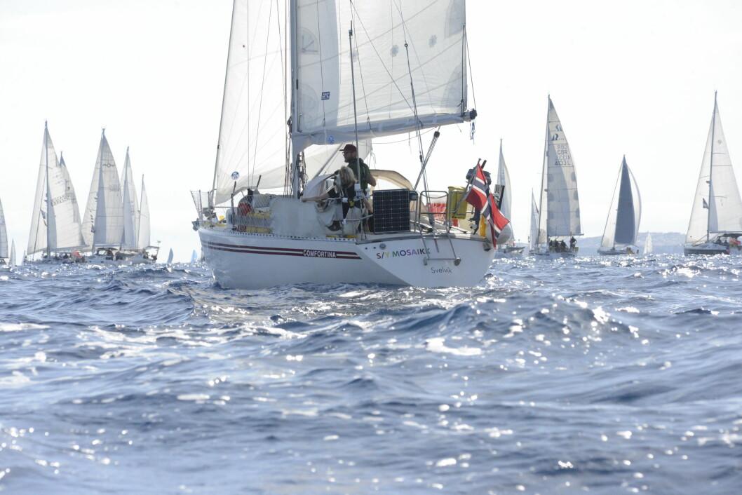 START: «Mosaikk» ut fra starten fra Las Palmas i november.