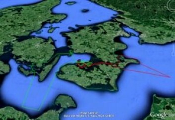 BANE: Vegvisir Race vil forgå i et farvann hvor navigasjon blir en viktig del.