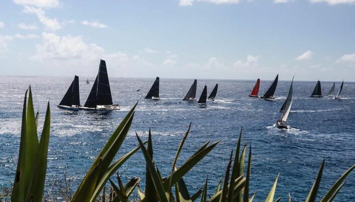 HOT: RORC Caribbean 600 tiltrekker seg raske båter og en haug av toppseilere fra hele verden.