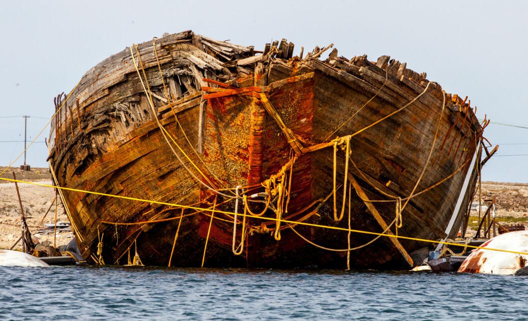 UTE AV VANNET: «Maud»s enorme skrog er hevet ut av vannet. Ishuden i baugen er fortsatt intakt.