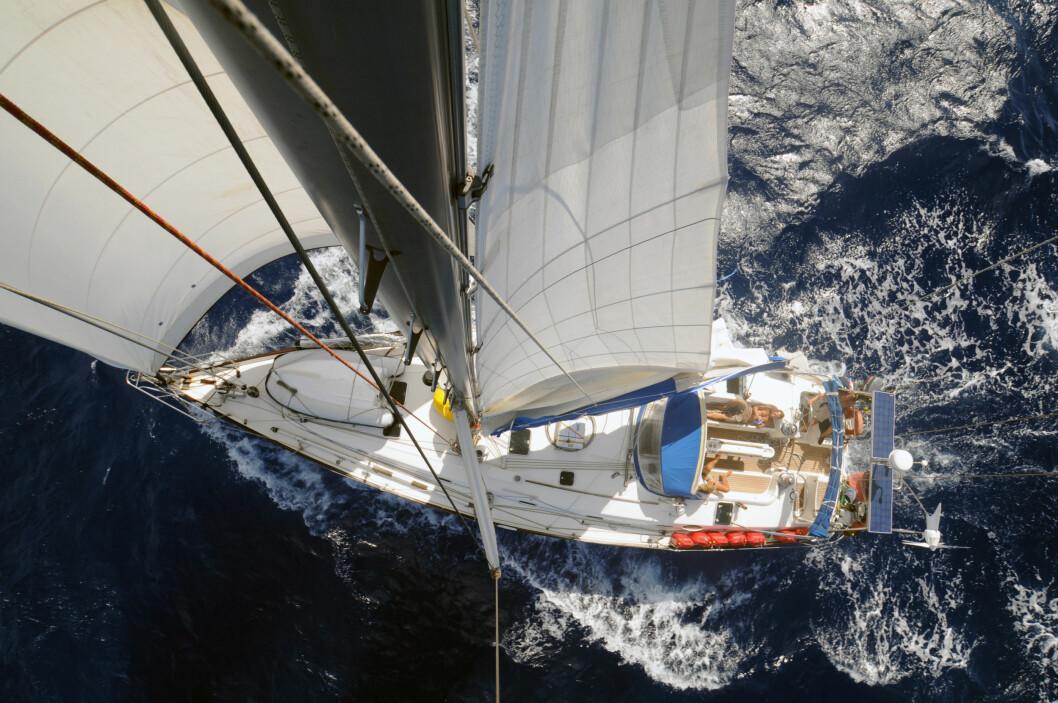 TO FLUER: En båt med fire, sterke personligheter om bord. Hva blir egentlig skipperens rolle oppi dette?