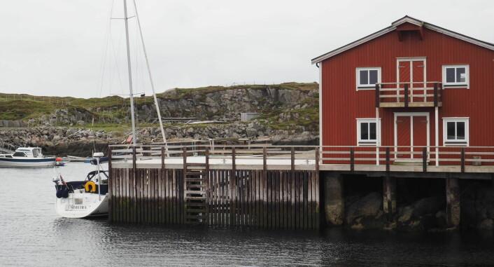 Kaia ved Sauøya