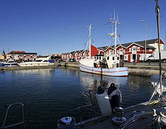Danmark stengt for utenlandske seilbåter