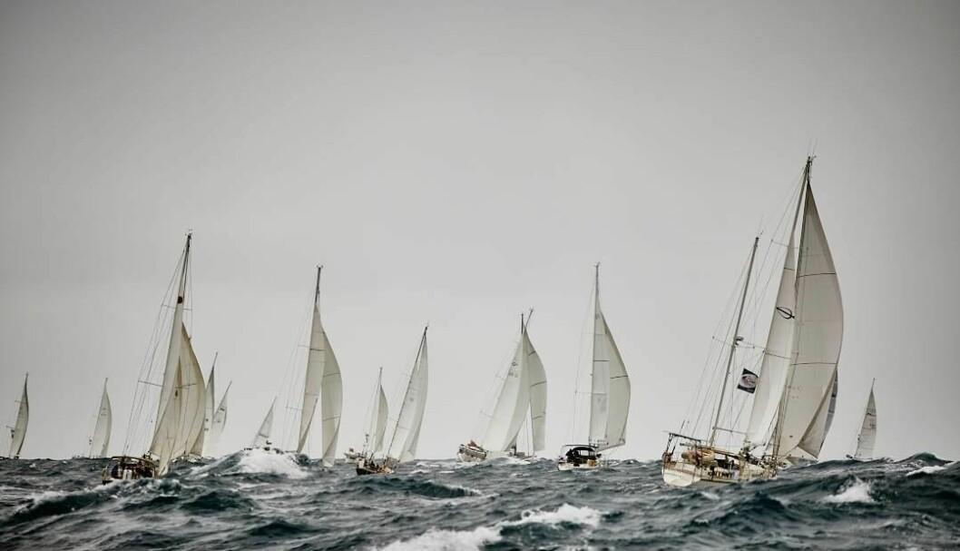 START: Det blåste godt ut fra Las Palmas. Vinden har løyet, men bølgene er fremdeles grove.
