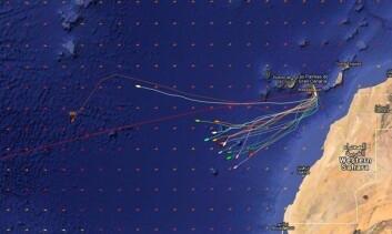 48TIMER: Kartet viser de norske båtenes plassering, samt svenske Pogo S2 og Brunel i front.