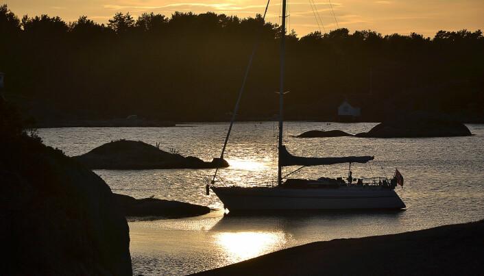 NATUR: I Norge er det vanlig å ligge med baugen mot land og hekkanker.
