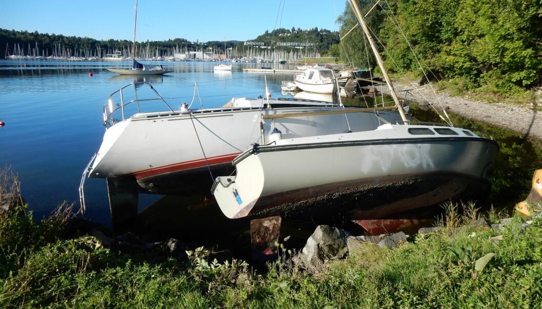 VRAKT: Slitne båter havner gjerne slik når eieren ikke lengre tar vare på båtene. her en C&C30 og Firling med lav verdi.