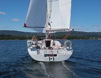 Strenge krav for solo-seilerne i Færderseilasen