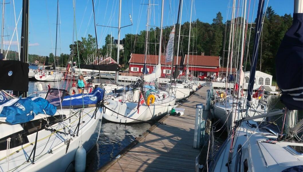 HANKØ: Bryggene på Hankø Yacht Club fylles opp med deltagere. Det er 48 båter på startlisten.