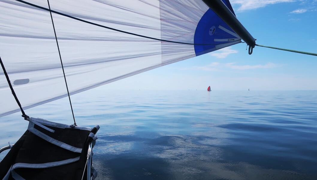 VEKST: Flere leser om seiling i SEILmagasinet