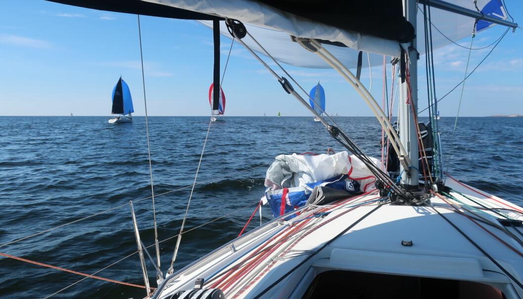 SILKESEILAS: Båtene hadde stabil medvind ut fra start, men det varte ikke lenge.