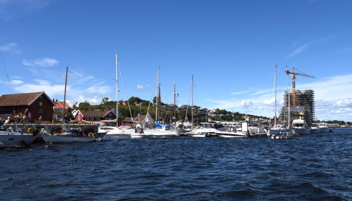 FULLE HAVNER: Gjestehavna i Langesund fylt til siste ledige gjesteplass.