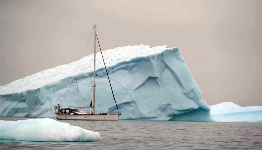 Familien Slungaard Myklebust på S/Y Vilja har ankommet Grønland på sin ferd hjemover til Norge. Både respekt og litt flaks ga dem en uproblematisk innseiling forbi isfjell inn til kysten.