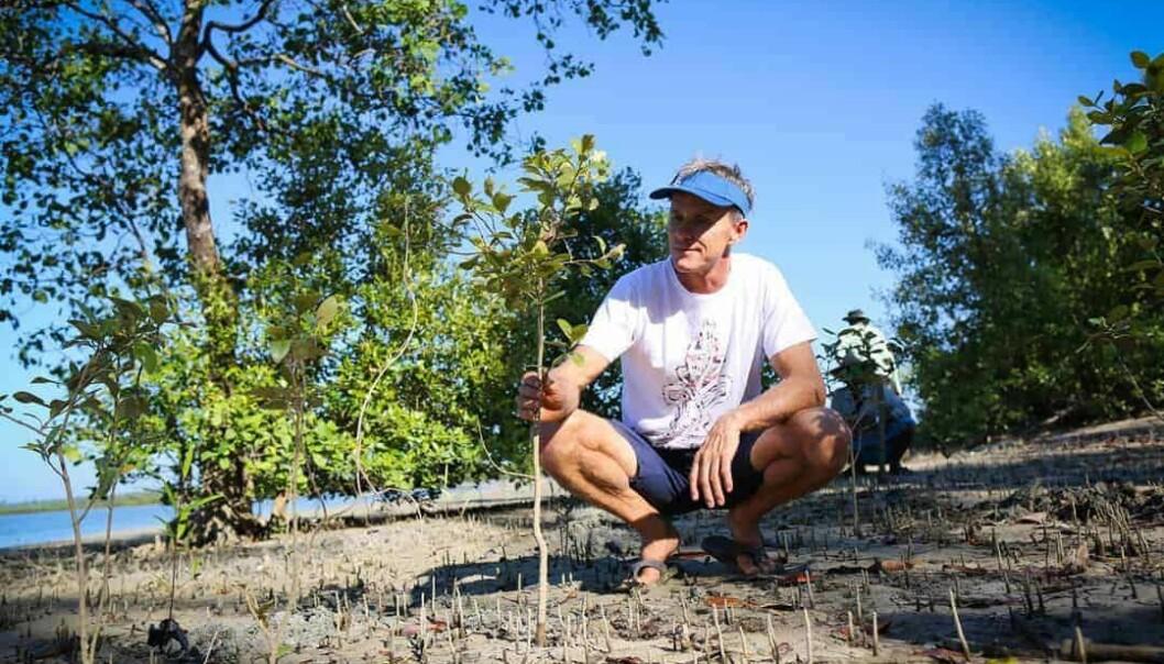 TI TRÆR: For hvert brett Starboard produserer, sørger Svein Rasmussen for at det plantes det ti nye mangrovetrær.