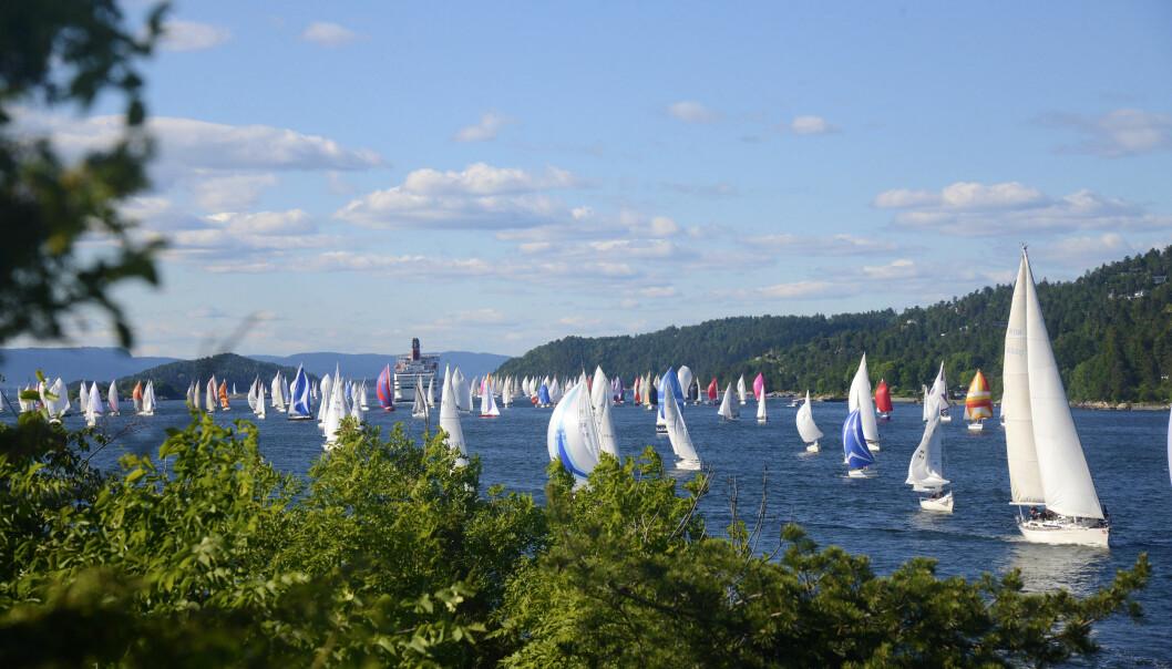 VINDKRAFT: Å eie en seilbåt krever kunnskap på en rekke områder. Det første hinderet er å velge riktig båt.