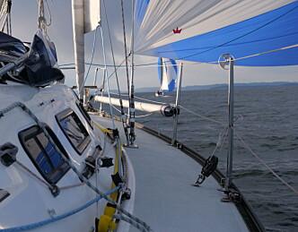 Lens ut fjorden i lett vind