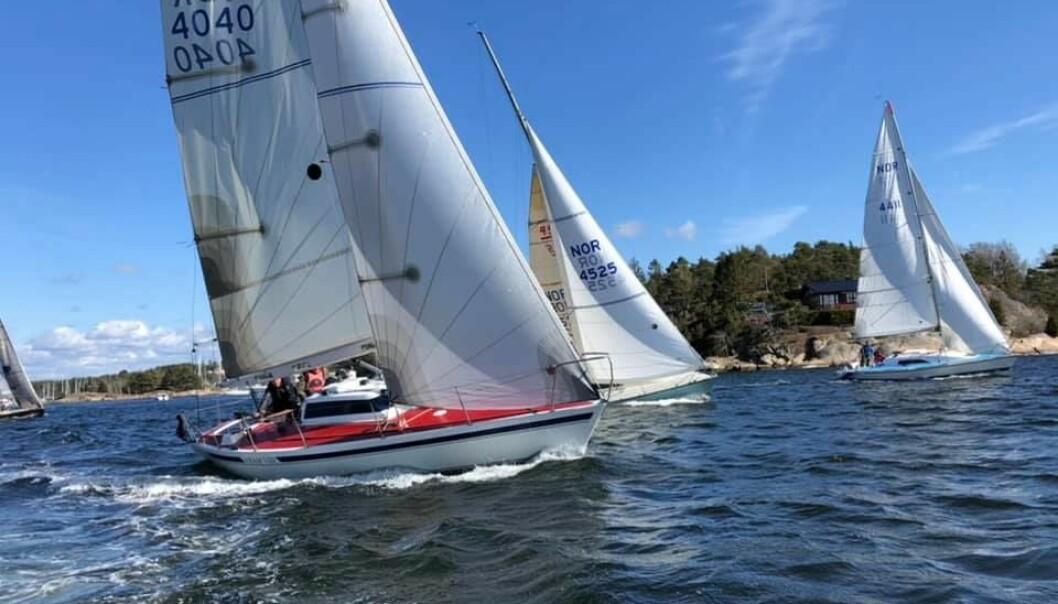 RACING: 15 Halvtonnere er samlet i Sarpsborg. Nå møtes noen av dem i en skikkelig regatta.