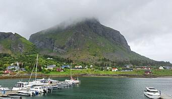 Lovund gjestehavn ligger sør på øya.